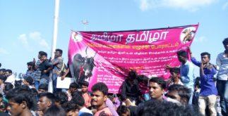 Jallikattu Protest | Students Refusing to Leave 4 Behind History