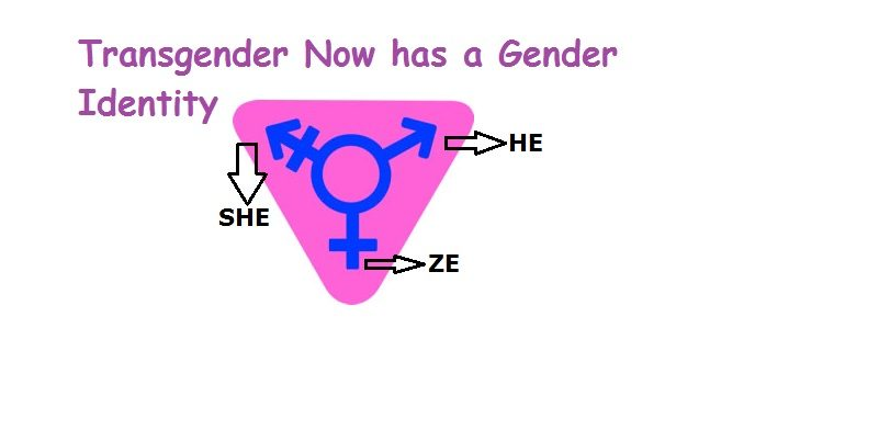 He, She, ZE | Transgender Has Gender Identity, Expression 1 Behind History